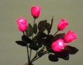 Lite-up 5 Roses Bouquet