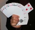 SY Rising Card (Bicycle poker)