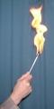 Vanishing Lit Torch