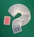 Mazzo Brainwave Card, Bicycle poker