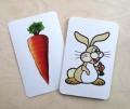 Carota e Coniglio