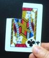 Carta Indistruttibile Bicycle (poker)